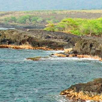 Kuamoʻo Battlefield Purchased